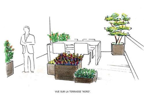 Conception et réalisation de jardins individuels et de terrasses
