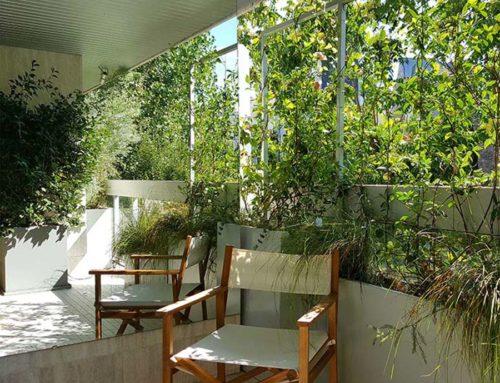 Aménagement d'un patio et de balcons en plein Paris