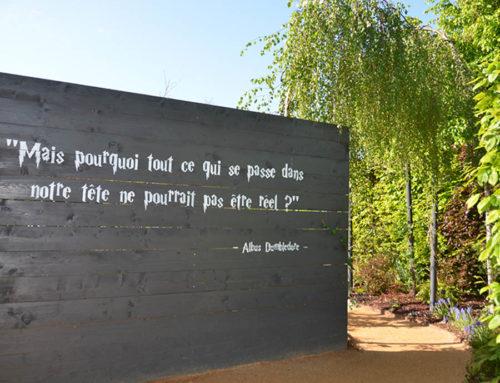 Philippe Collignon présente notre jardin sur France 2
