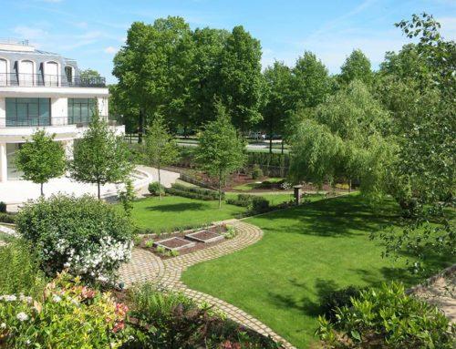 Création d'un jardin paysager à Meudon