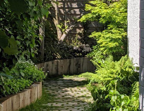Conception et réalisation d'un jardin romantique