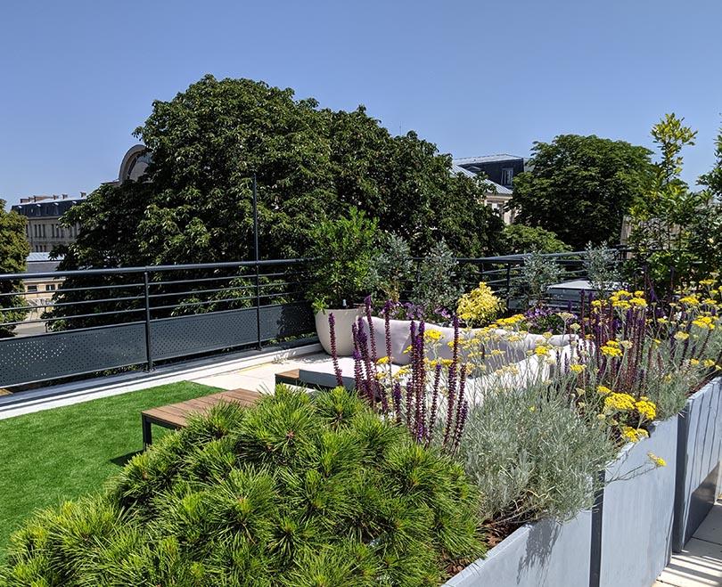 architecte création terrasse